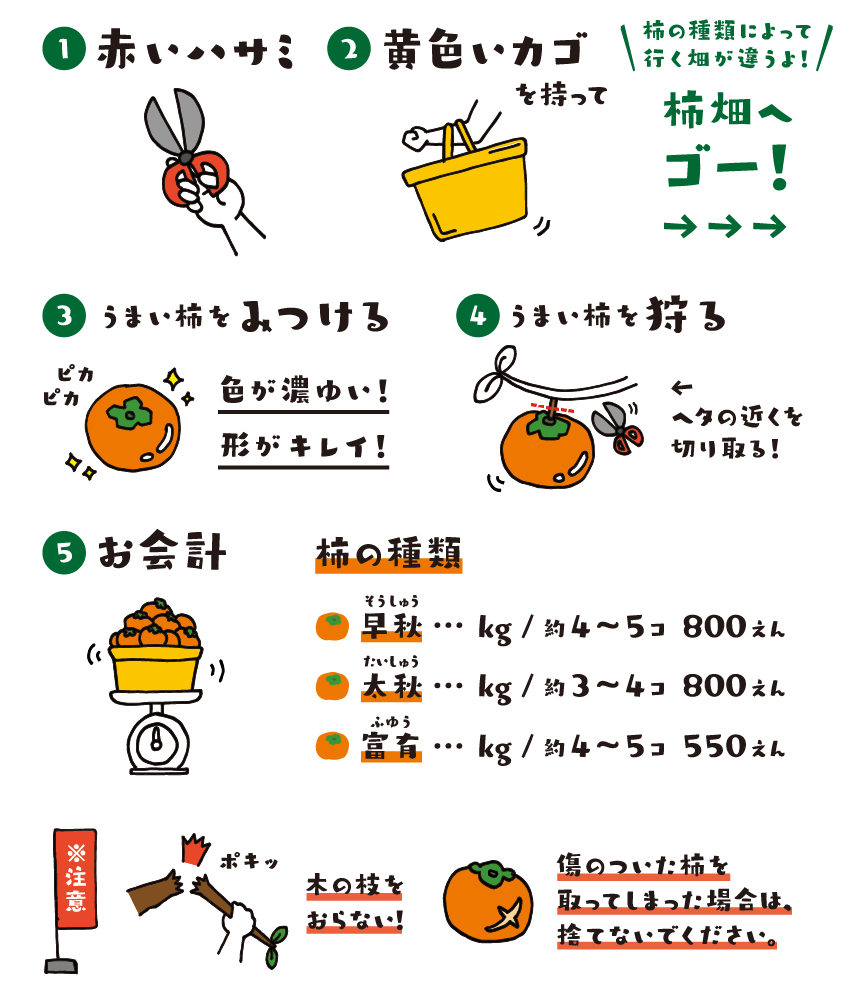 柿狩りの仕方