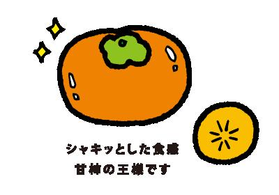 富有(ふゆう)シャキッとした食感 甘柿の王様です
